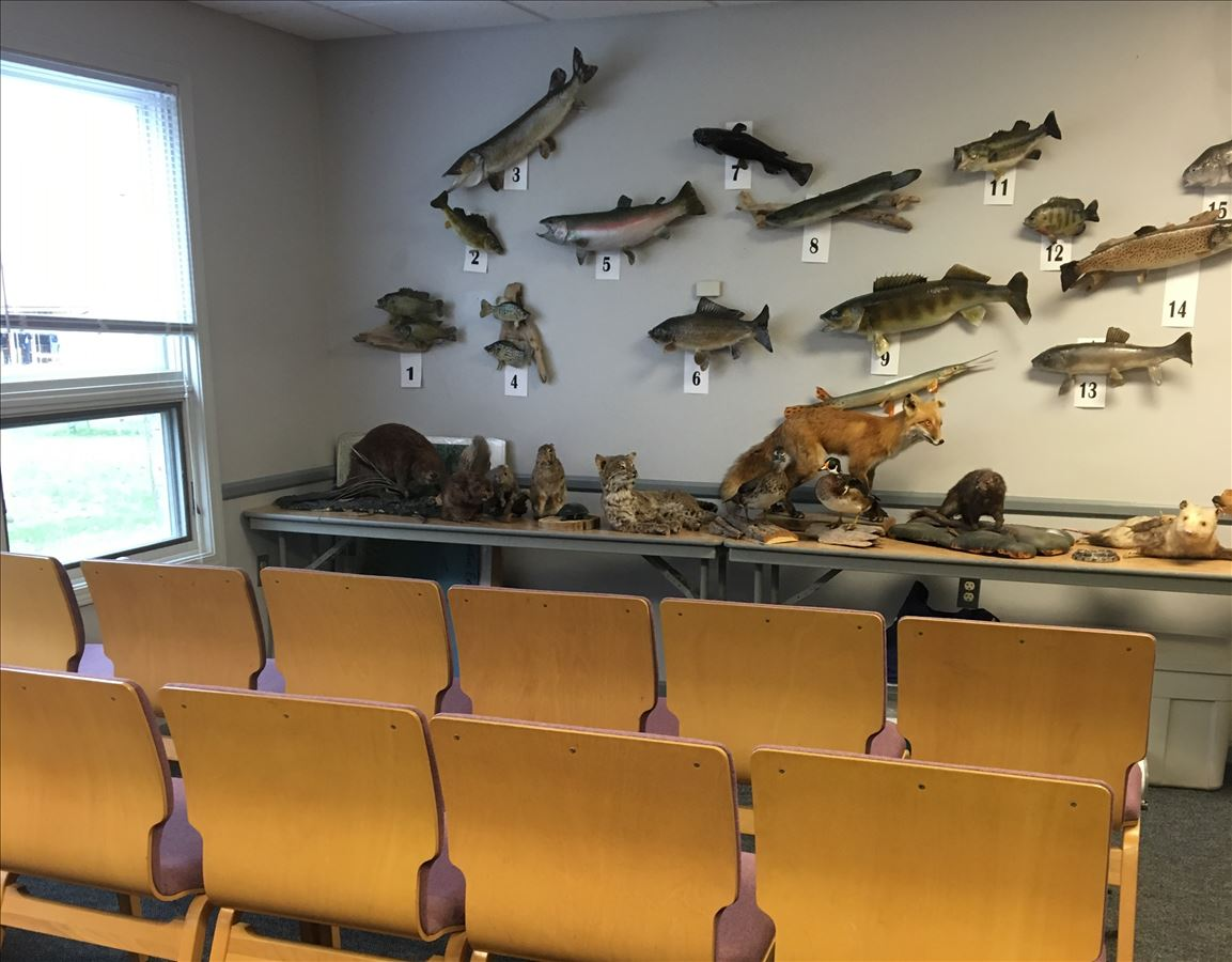 Classroom Saginaw Bay Visitor Center
